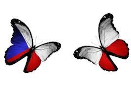 Cesi a Polaci motyli